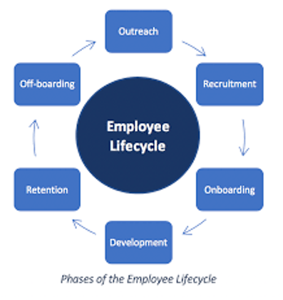 Image result for employee lifecycle phases